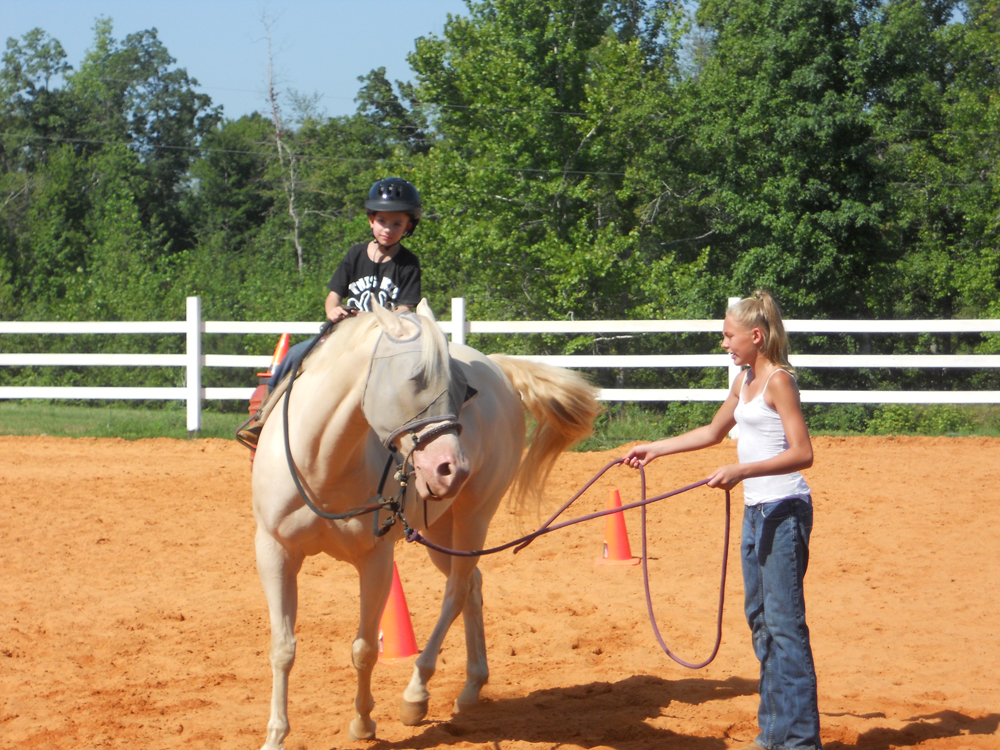 J Amp M Performance Horses Jennifer Brown Of Adamsville