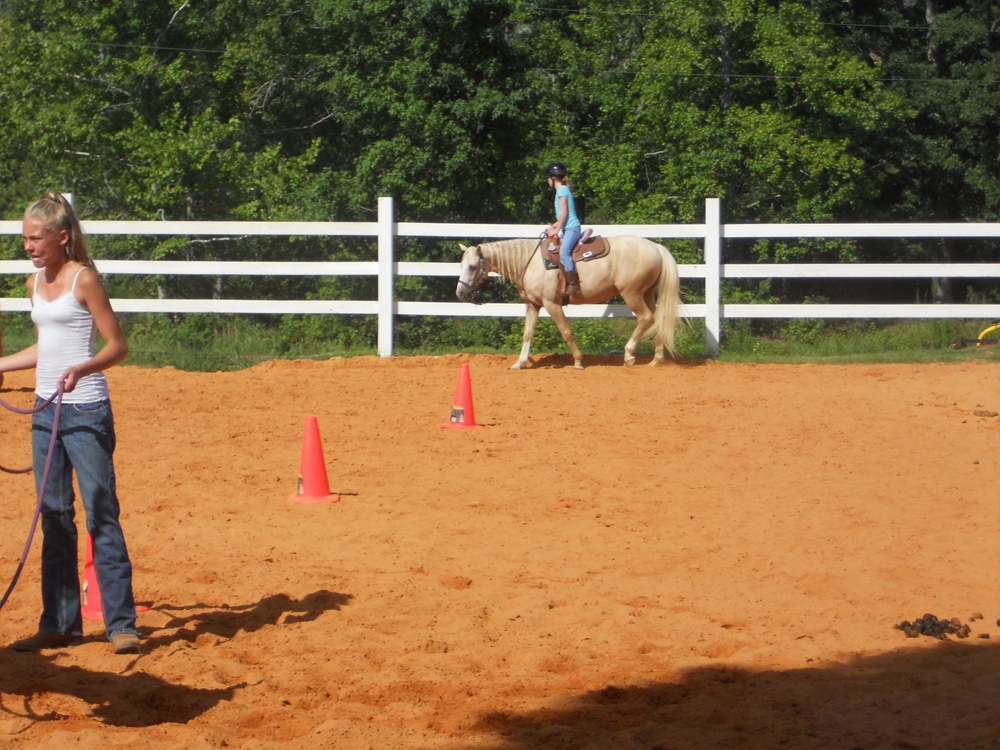 J Amp M Performance Horses Jennifer Brown Of Adamsville